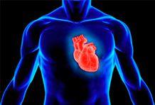 Затмение сердца